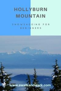Hollyburn Mountain snowshoeing