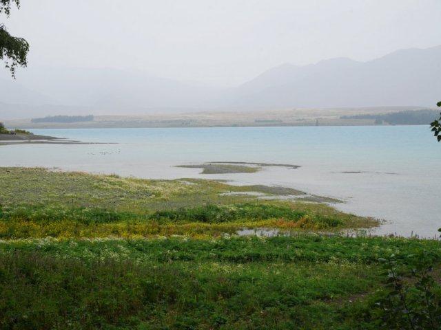 Lake Tekapo by Mount John Walkway