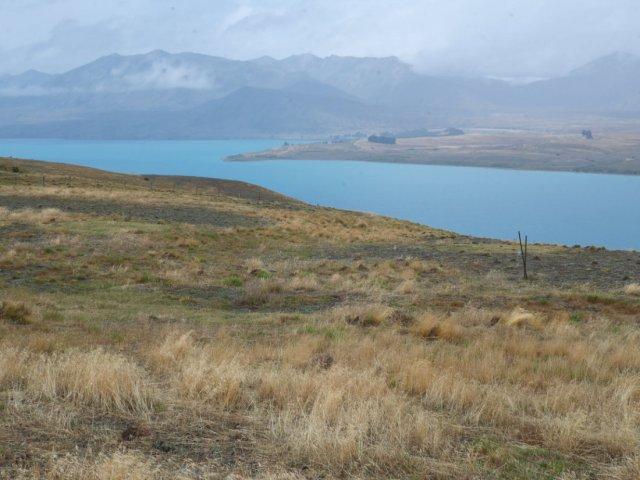 Lake Tekapo looking bluer