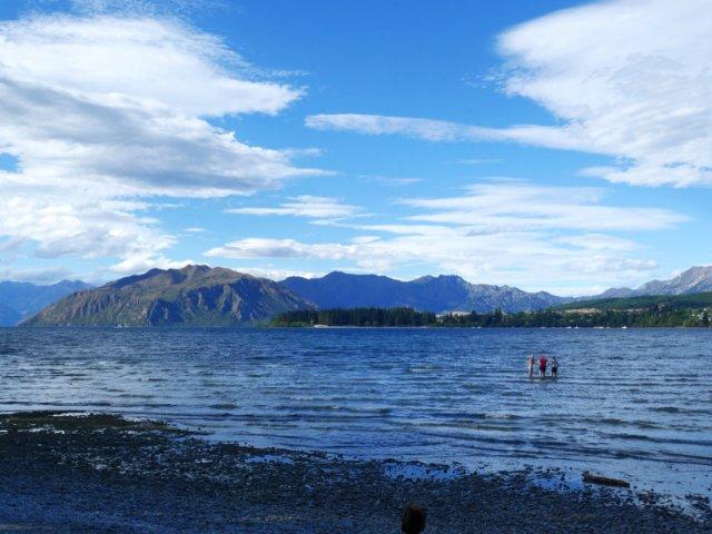 Lake Wanaka from Roys bay
