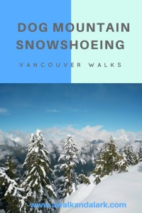 Dog Mountain Trail - snowshoeing