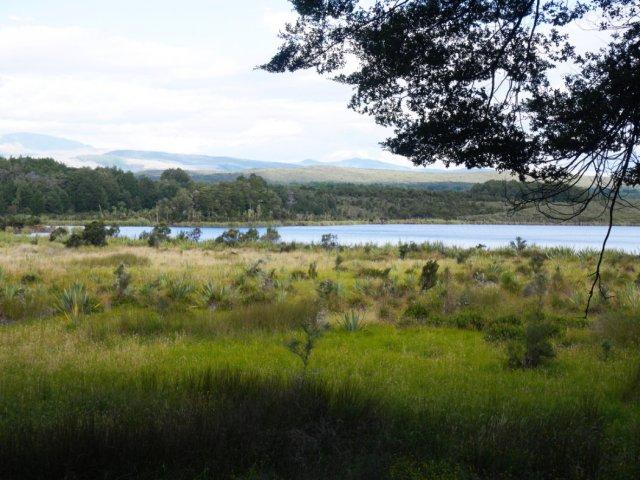 Mistletoe Lake
