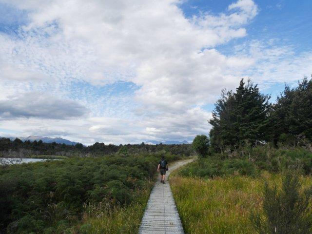 Mistletoe Lake boardwalk