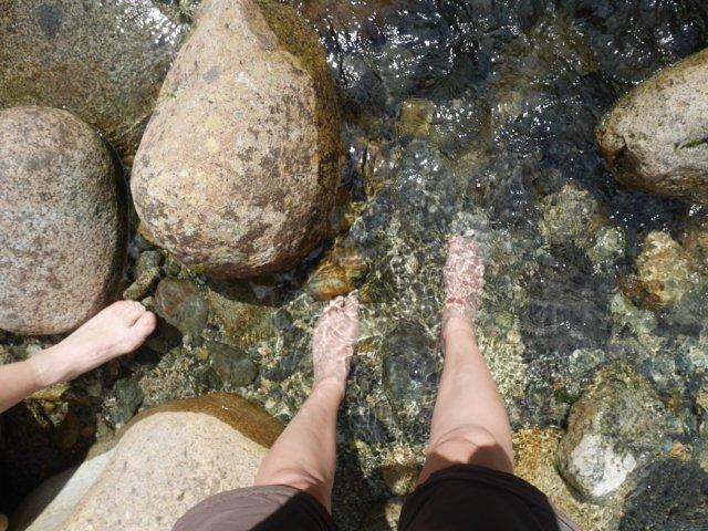 Dip in Lynn Creek
