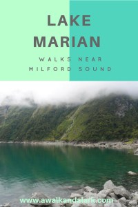 Lake Marian Track - Walks near Milford Sound