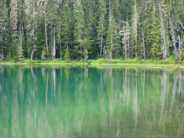 Reflections on Lower Joffre Lake
