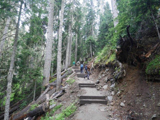 Joffre Lakes trail steps
