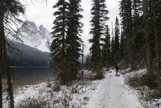 Looking backwards to Mount Burgess on the Emerald Lake Loop