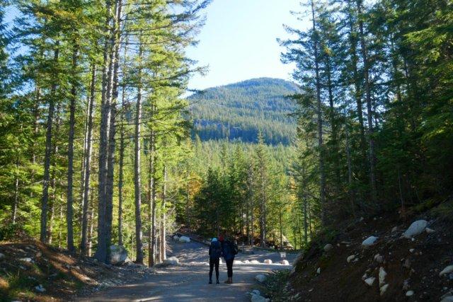 The start of Al's Habrich ridge trail