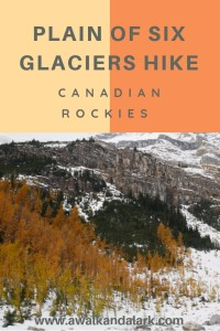 Plain of Six Glaciers - larches in the Rockies