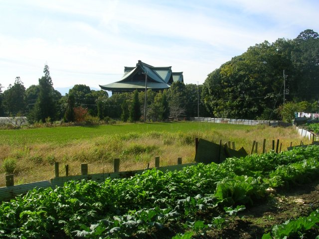 Farms and beautiful buildings (Tenrikyoshikishimadai Church)