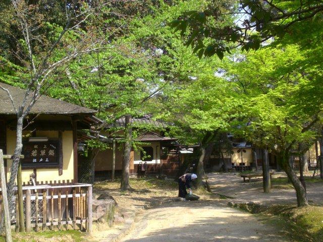 Path near Wakakusa yama