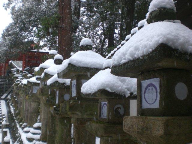 Kasuga Taisha lanterns in the snow