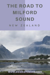 The road to Milford Sound - Foreshore
