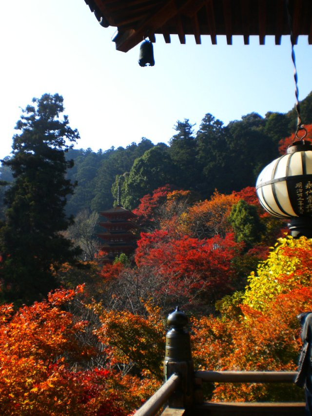 View from Hasedera Hondo over to the five stories pagoda