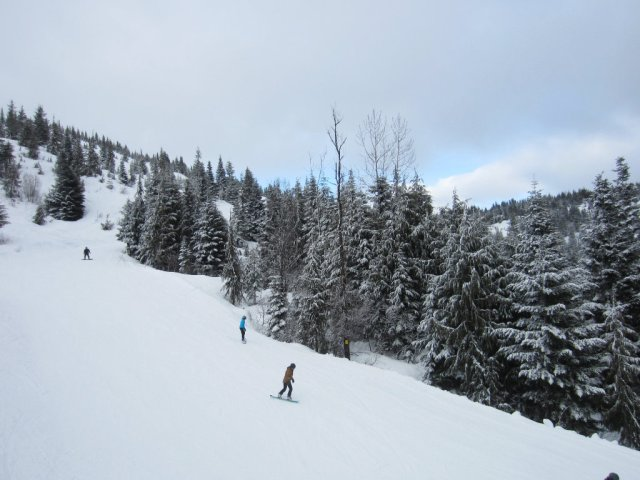View of the green run on Sasquatch Mountain
