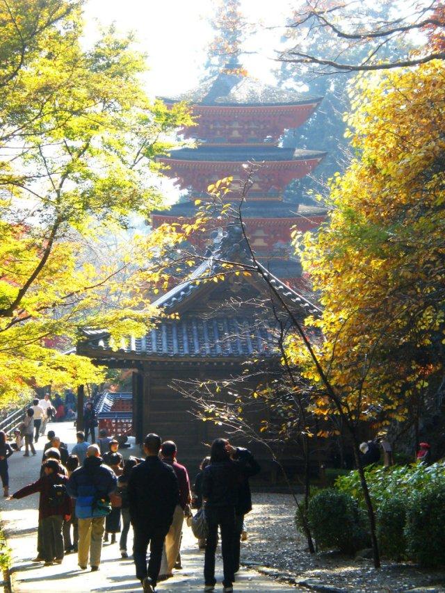 Hasedera momiji and pagoda