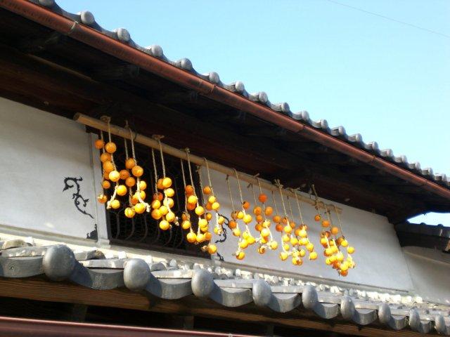 Kaki hanging on the yashiki