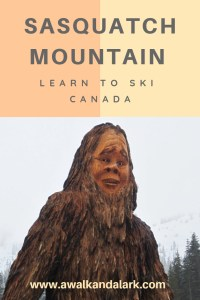 Sasquatch Mountain - learn to ski with the sasquatch