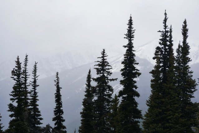 Mist and snow from Windy Joe Mountain