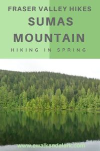 Sumas Mountain- Fun hikes in the Fraser Valley, Canada