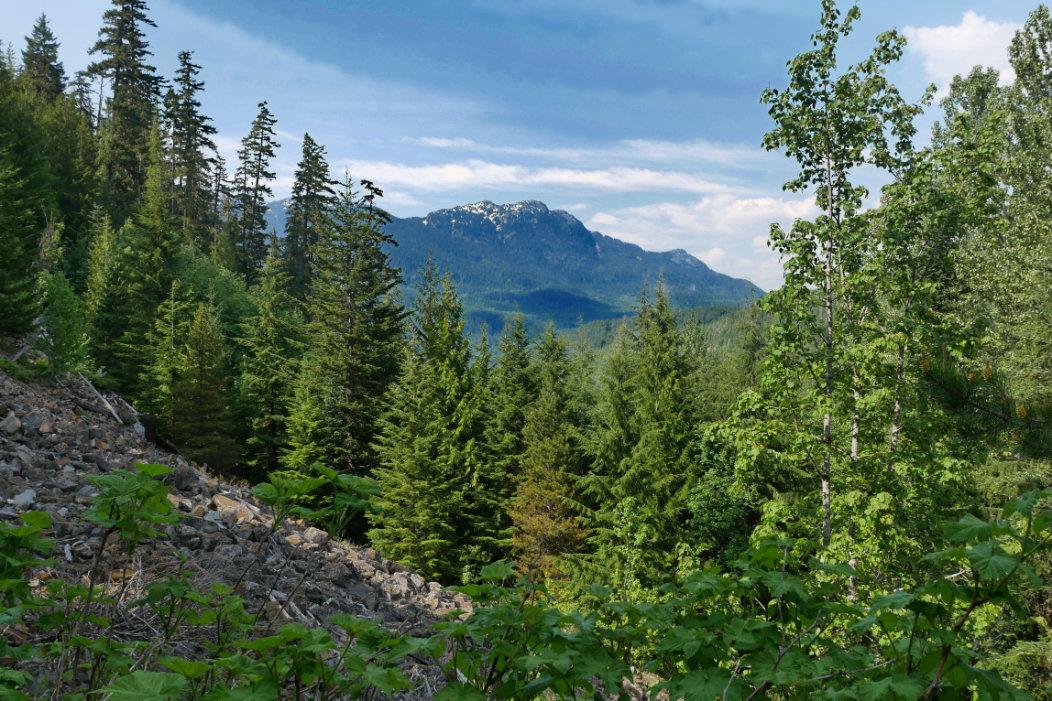 Crater Rim Trail - Whistler Hikes - A walk and a lark