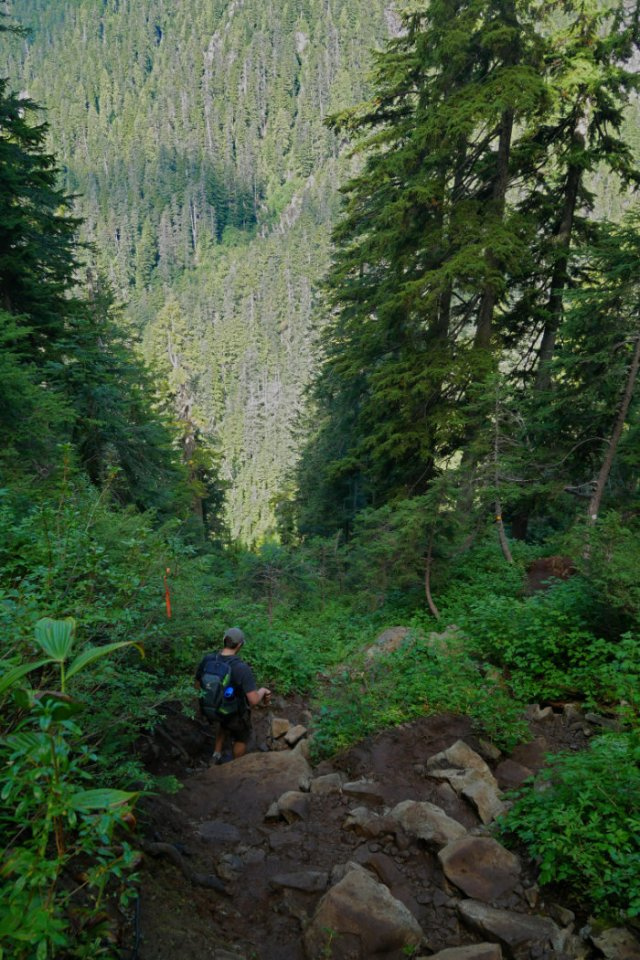 Trail down to Crown Pass