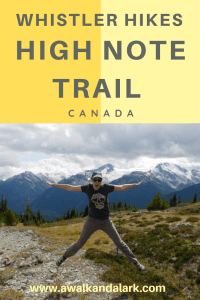 High Note Trail Whistler - jumping on top of Flute Summit