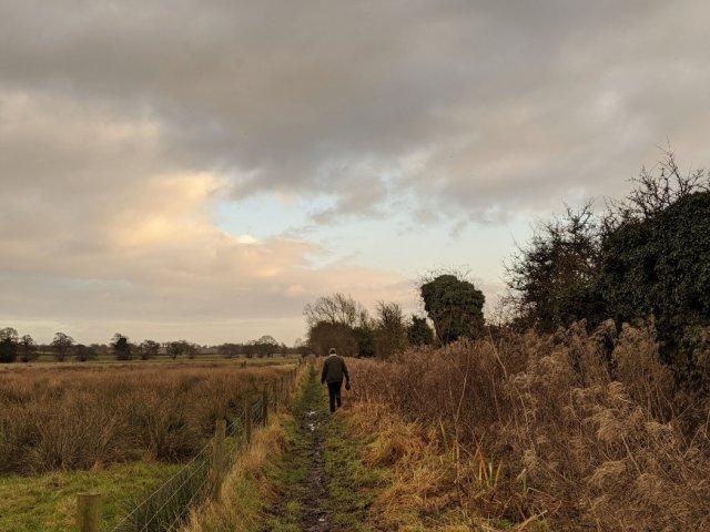 Super soggy fields
