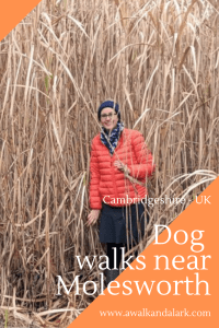 Hikes near Molesworth, Cambridgeshire (UK) take your dog for a walk