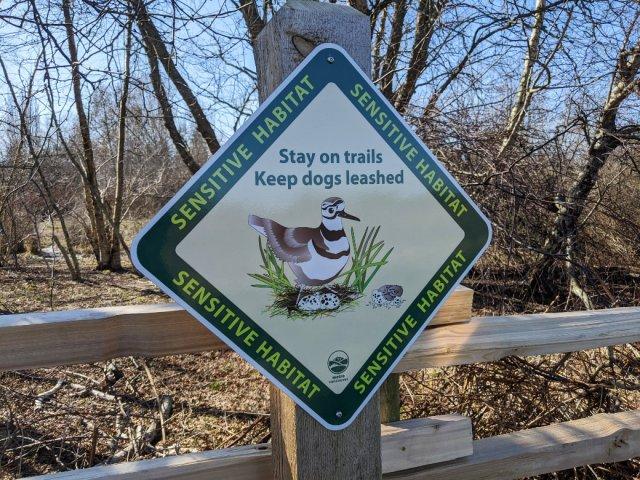 Keep dogs on a lead as its a bird habitat