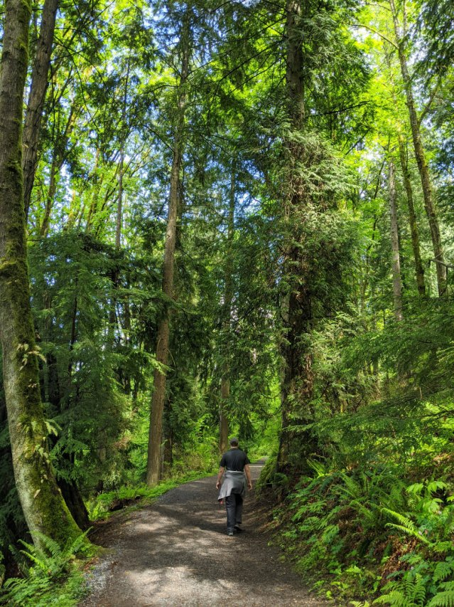 Trans Canada Trail on top of Burnaby Mountain