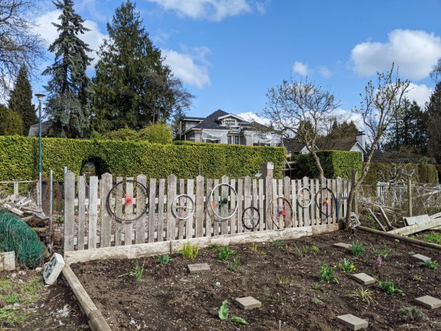 53rd Wheels on a fence on the Arbutus Greenway