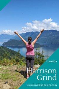 Harrison Grind near Harrison Hot springs - Fun short hike