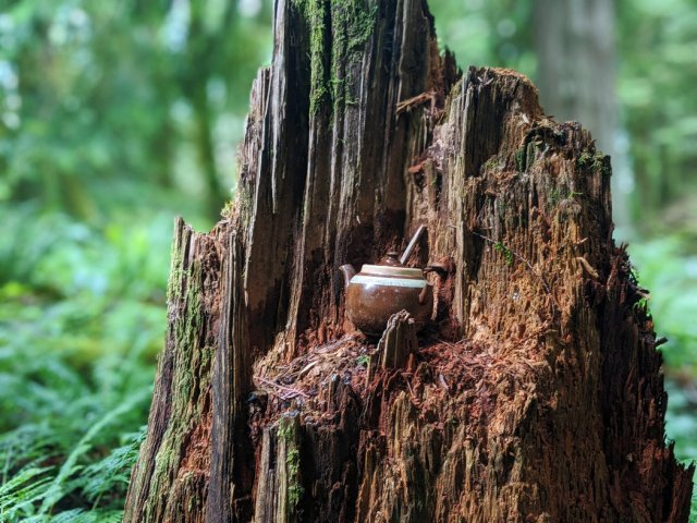 Teapot - brown on a stump