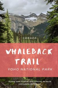 Whaleback Trail in Yoho National Park - view from near Twin Falls