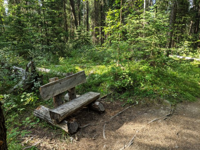 Cute bench of the way to Dog Lake