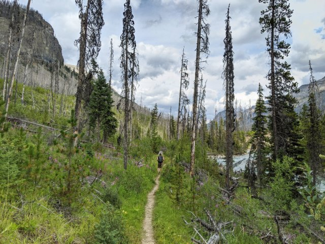 Trail back to Marble Canyon