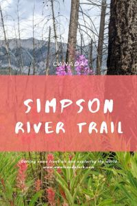 Simpson River Trail in Kootenay National Park, Canada - A flower filled hike