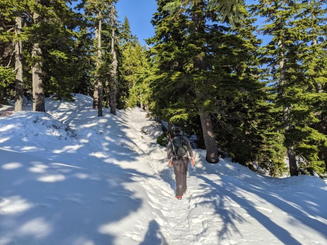 Snowshoeing on Black Mountain