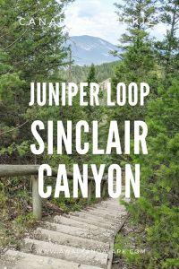 Juniper Loop at Sinclair Canyon - Kootenay National Park