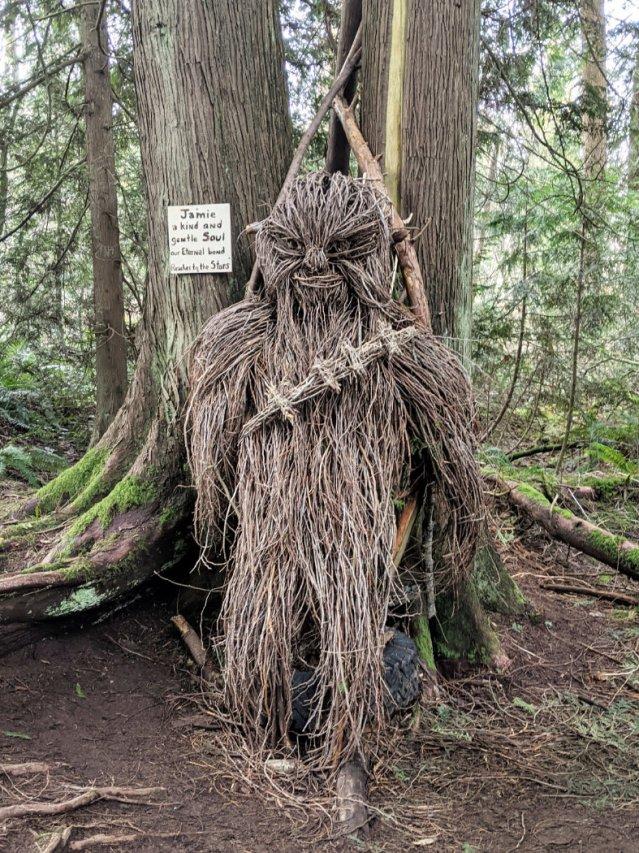 Chewie in the woods in Robert Burnaby Park