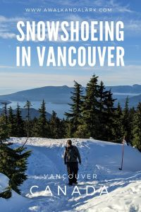 Gorgeous trails to go snowshoeing in Vancouver's local mountains