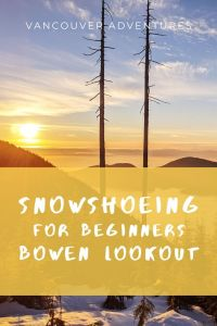 Snowshoeing for beginners - Bowen Lookout on Cypress Mountain