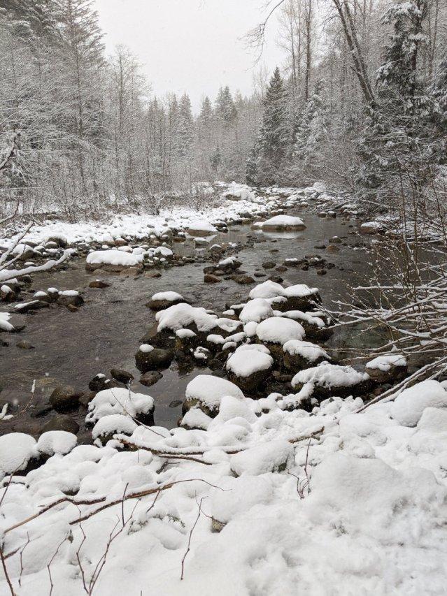 Lynn Creek in the snow