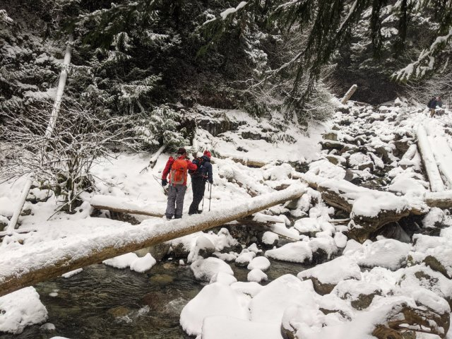 Cross the log to get close to Norvan Falls