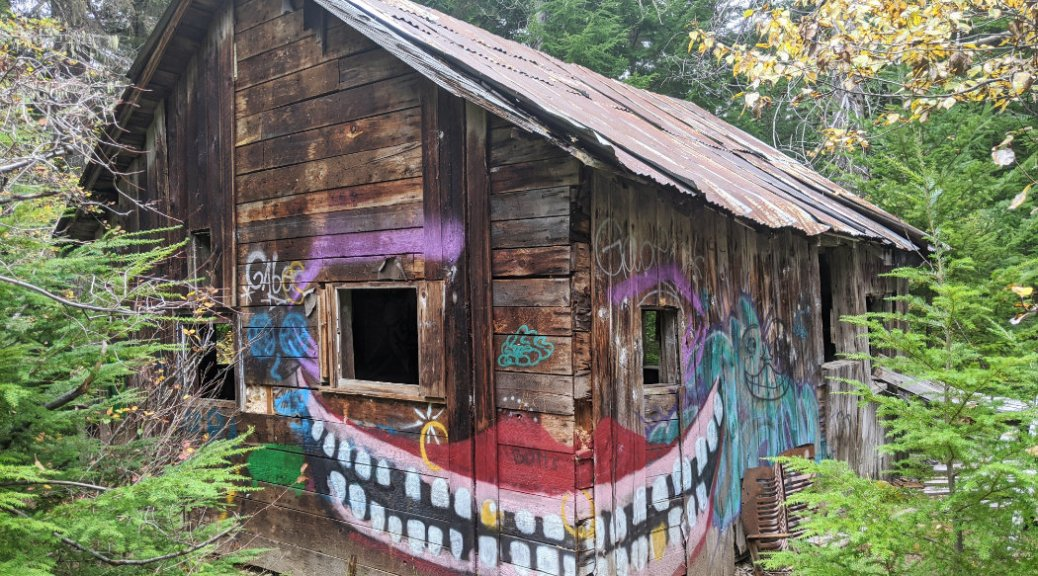 This cabin is happy to be up in Parkhurst Ghost Town