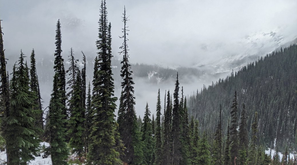 Views before we headed down from near Rohr Lake