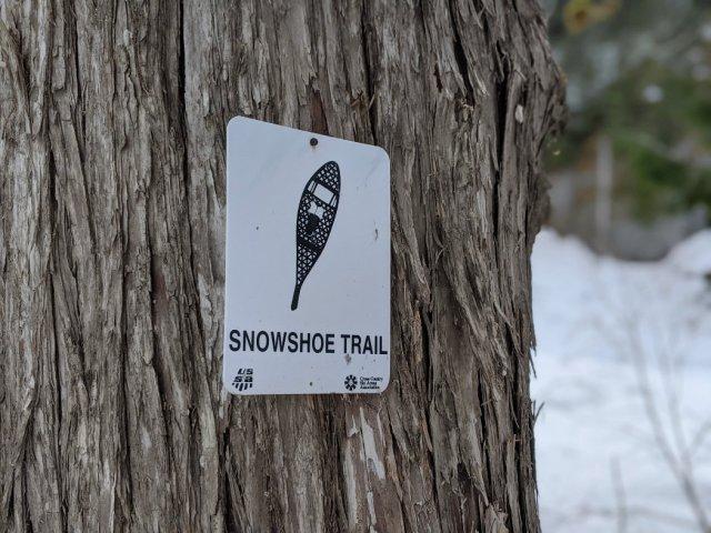 Snowshoe trail markers - Alexander Falls
