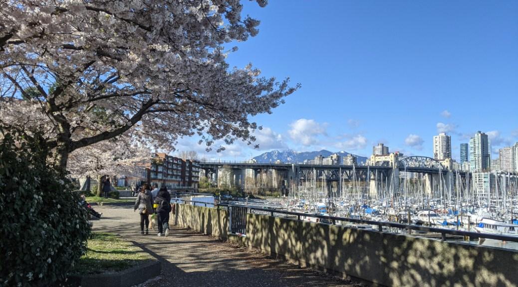 Creekside Park along the Vancouver Sea Wall